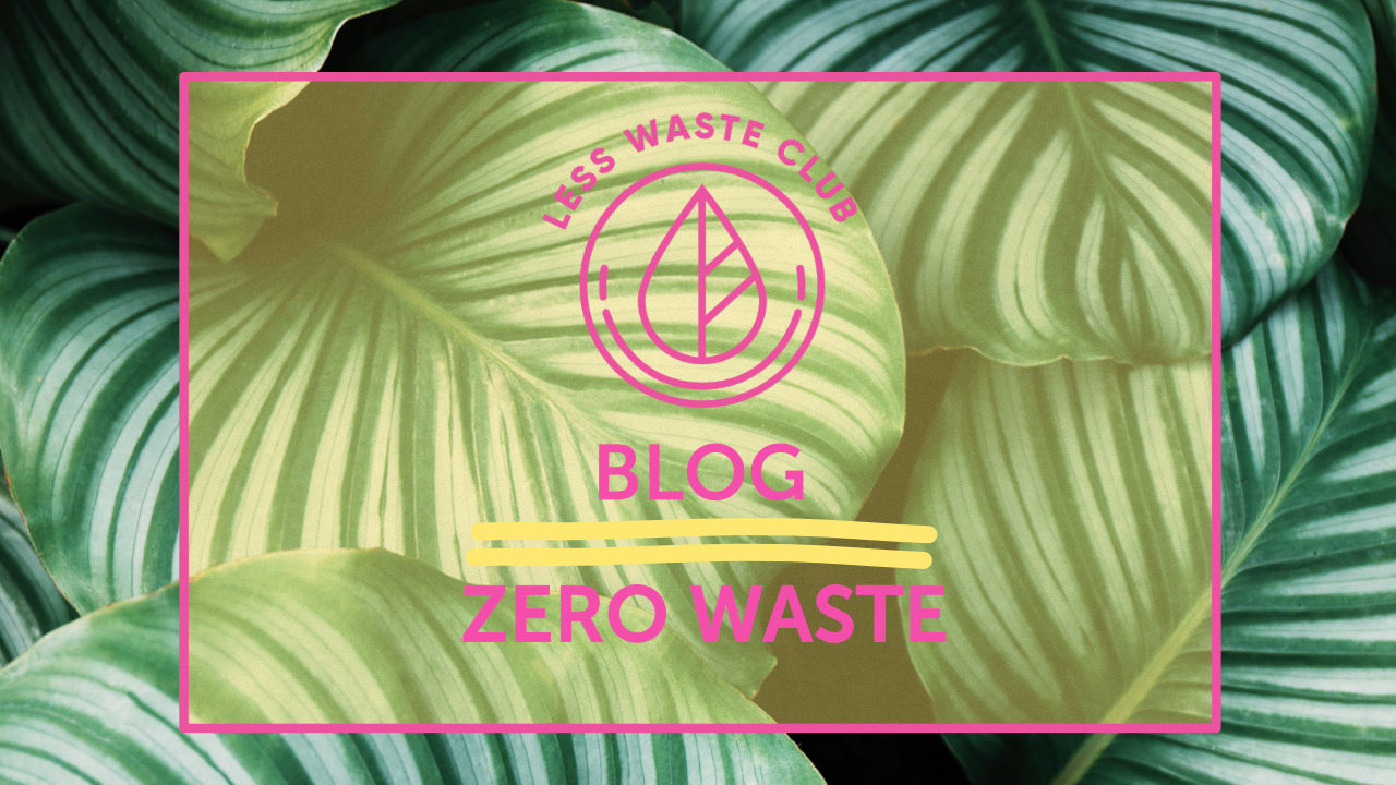 Zero Waste Living – warum ist es so wichtig?