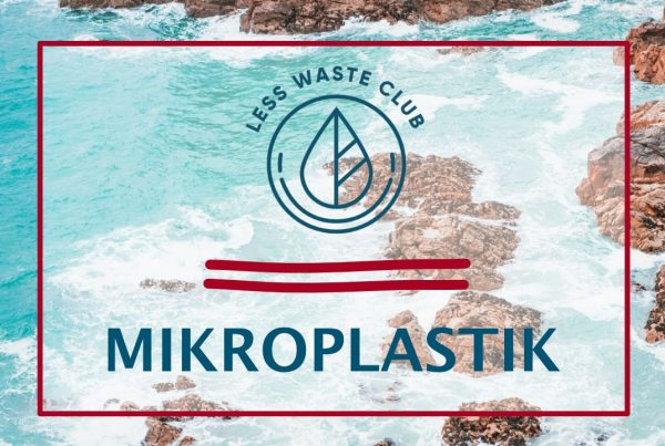 Less Waste Club Magazin Thema Mikroplastik