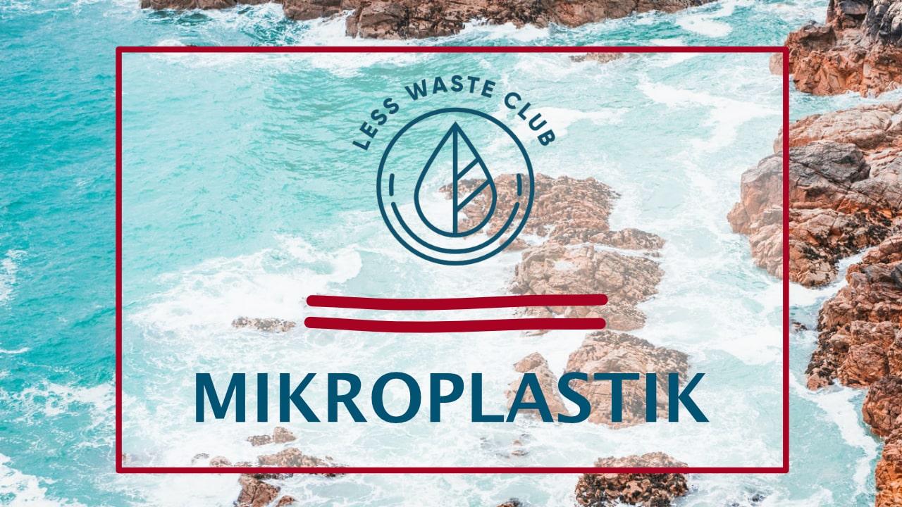 Mikroplastik in Meerestieren